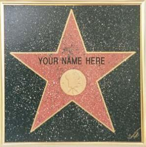 Star on Hollywood Walk of Fame with