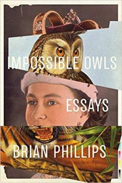zz owls_